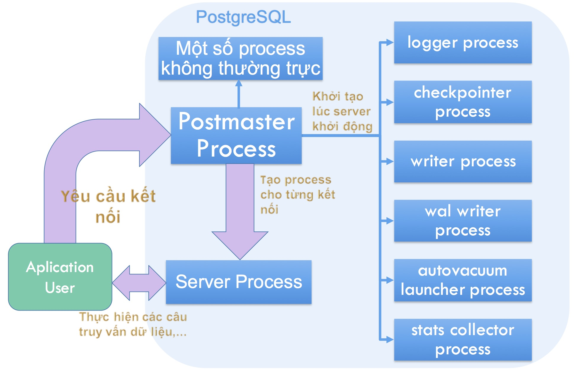 PostgreSQL processes